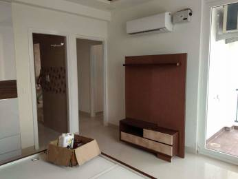 1100 sqft, 1 bhk BuilderFloor in Builder Project Sector 12Panchkula, Panchkula at Rs. 8500