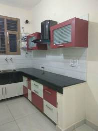 1100 sqft, 1 bhk BuilderFloor in Builder Project Sector 2, Panchkula at Rs. 6000