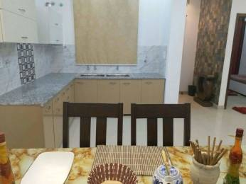 1300 sqft, 3 bhk Apartment in Builder Project Sector 20, Panchkula at Rs. 22000