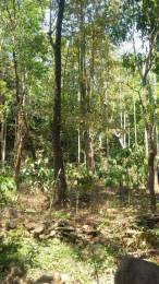 3488 sqft, Plot in Builder Vythiri Woods Vythiri, Wayanad at Rs. 14.0000 Lacs