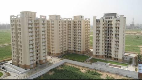 1040 sqft, 2 bhk Apartment in Eros Wembley Estate South City II, Gurgaon at Rs. 95.0000 Lacs