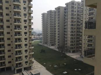 2982 sqft, 4 bhk Apartment in Satya The Legend Sector 57, Gurgaon at Rs. 44000