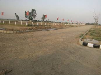 630 sqft, Plot in Builder Rose avenue Ambala Highway, Chandigarh at Rs. 6.0000 Lacs