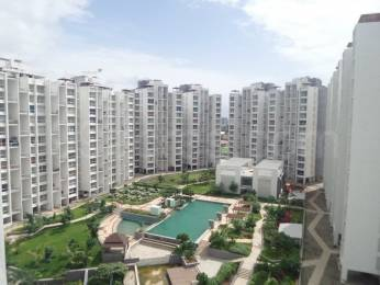 1255 sqft, 2 bhk Apartment in Marvel Fria Wagholi, Pune at Rs. 60.0000 Lacs