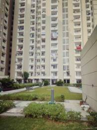 482 sqft, 1 bhk Apartment in SBP Housing Park Mohan Nagar, Dera Bassi at Rs. 17.9000 Lacs