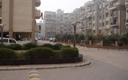 1299 sqft, 2 bhk Apartment in Niho Saffron Scottish Garden Ahinsa Khand 2, Ghaziabad at Rs. 60.0000 Lacs