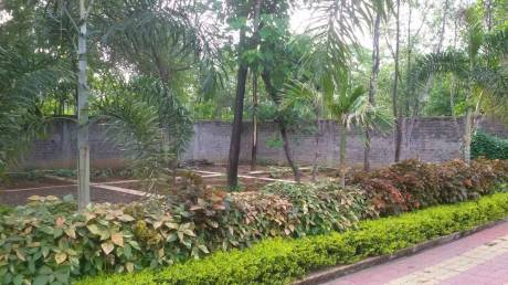 3000 sqft, Plot in Builder Plots n Plots Daldal Seoni, Raipur at Rs. 36.0000 Lacs