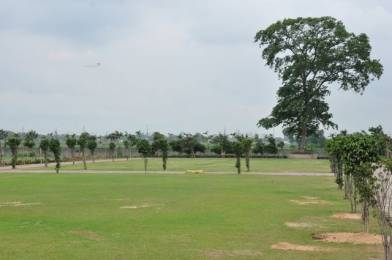 11000 sqft, Plot in Builder Farmlands n villas VIP Road, Raipur at Rs. 78.0000 Lacs