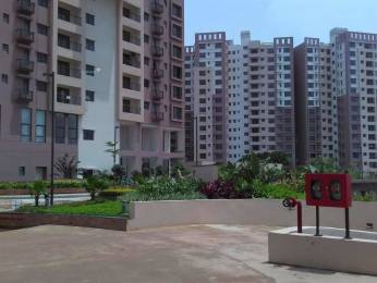 1588 sqft, 3 bhk Apartment in Mani Tirumala Raghunathpur, Bhubaneswar at Rs. 80.0000 Lacs