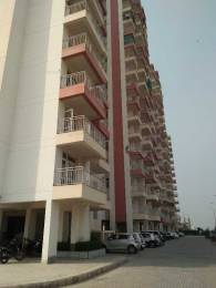 1279 sqft, 2 bhk Apartment in KLJ Greens Sector 77, Faridabad at Rs. 8000