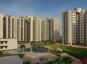 850 sqft, 2 bhk Apartment in Umang Summer Palms Sector 86, Faridabad at Rs. 35.0000 Lacs