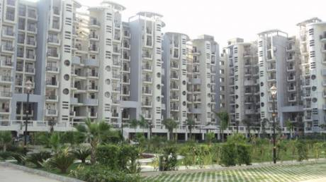 1165 sqft, 2 bhk Apartment in Omaxe Heights Sector 86, Faridabad at Rs. 45.0000 Lacs