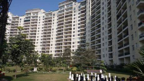 1950 sqft, 3 bhk Apartment in Vatika City Sector 49, Gurgaon at Rs. 34000