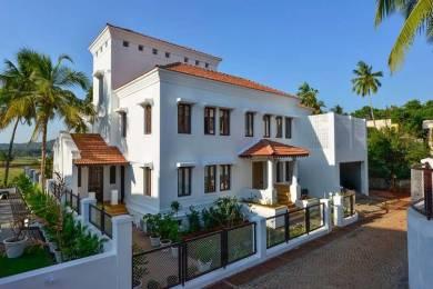 7240 sqft, 4 bhk Villa in Builder READY LUXURY VILLAS Nerul, Goa at Rs. 7.0000 Cr