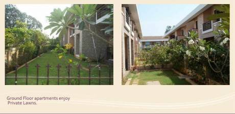 3700 sqft, 4 bhk Villa in Builder READY TO MOVE 4 BR ROW VILLAS NEAR Velha, Goa at Rs. 2.0800 Cr