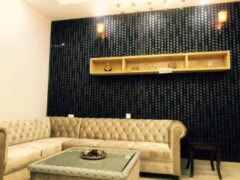 1491 sqft, 3 bhk BuilderFloor in Builder 3bhk semi furnished flat on chandigarh Mohali Sec 125, Chandigarh at Rs. 33.0000 Lacs