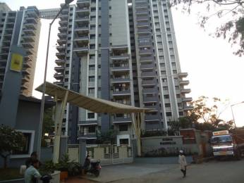 2220 sqft, 3 bhk Apartment in Sobha Magnolia BTM Layout, Bangalore at Rs. 1.4000 Cr