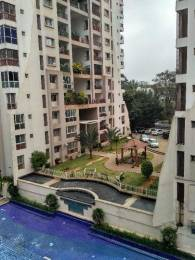 1800 sqft, 3 bhk Apartment in Jain Prakruti Jayanagar, Bangalore at Rs. 35000