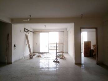 1589 sqft, 4 bhk BuilderFloor in Builder Project Chandigarh Road, Chandigarh at Rs. 79.1600 Lacs