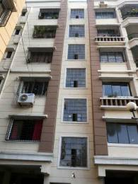 600 sqft, 1 bhk Apartment in GM Meena Residency 1 Teghoria, Kolkata at Rs. 10000