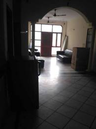 250 sqft, 1 bhk BuilderFloor in Builder independent builder floor New Rajendra Nagar, Delhi at Rs. 21000