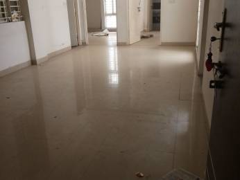 1200 sqft, 3 bhk Apartment in Balaji Mahaveer Nagar Shahpura, Bhopal at Rs. 8500
