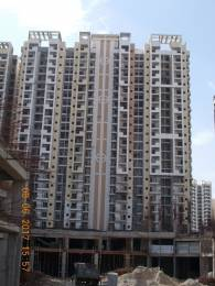 1195 sqft, 3 bhk Apartment in Ajnara LeGarden Sector 16 Noida Extension, Greater Noida at Rs. 47.6805 Lacs