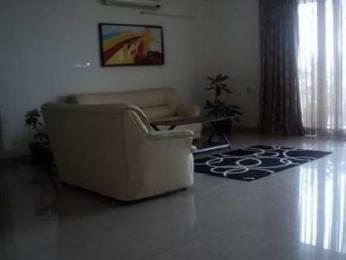1650 sqft, 3 bhk Apartment in Chandigarh Savitry Heights II VIP Rd, Zirakpur at Rs. 52.7500 Lacs