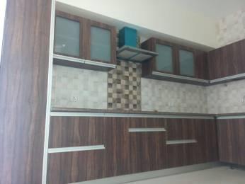 850 sqft, 2 bhk Apartment in JTPL Townships Flora Designer Floors Sector 115 Mohali, Mohali at Rs. 95.0000 Lacs
