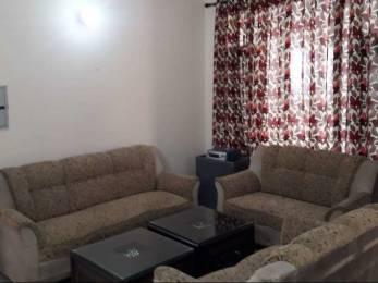 1590 sqft, 3 bhk Apartment in Trishla City Bhabat, Zirakpur at Rs. 17000