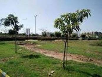 1233 sqft, Plot in Builder Project Sector 116 Mohali, Mohali at Rs. 23.5600 Lacs