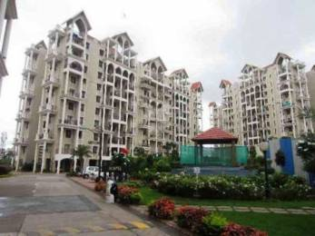 1000 sqft, 2 bhk Apartment in Goel Ganga Newtown Phase I Dhanori, Pune at Rs. 63.0000 Lacs