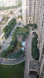 2686 sqft, 3 bhk Apartment in DLF Phase 4 Sector 27, Gurgaon at Rs. 69000