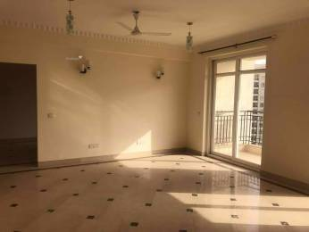 3931 sqft, 4 bhk Apartment in  Central Park 2 Townhouse Atta, Gurgaon at Rs. 0.0100 Cr