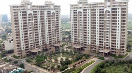 2450 sqft, 3 bhk Apartment in Vipul Belmonte Sector 53, Gurgaon at Rs. 50000