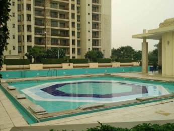 3032 sqft, 4 bhk Apartment in Skysons Buildwell Floor 1 Sector-54 Gurgaon, Gurgaon at Rs. 75000