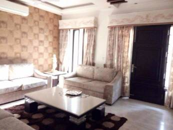 2810 sqft, 4 bhk Apartment in DLF The Icon Sector 43, Gurgaon at Rs. 80000