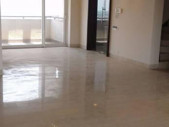 2450 sqft, 3 bhk Apartment in Builder Vipul Belmonte Sector53 Gurgaon DLF CITY, Gurgaon at Rs. 60000