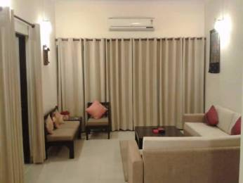 2450 sqft, 3 bhk Apartment in DLF Phase 5 Sector 53, Gurgaon at Rs. 55000