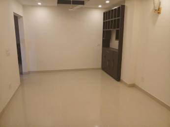 4306 sqft, 3 bhk BuilderFloor in Builder Whispering Meadows Sushant Lok Phase - 1, Gurgaon at Rs. 45000