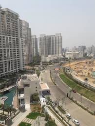 3123 sqft, 4 bhk Apartment in DLF The Crest Sector 54, Gurgaon at Rs. 1.3000 Lacs