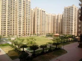 855 sqft, 2 bhk Apartment in Eros Sampoornam Sector 2 Noida Extension, Greater Noida at Rs. 7000
