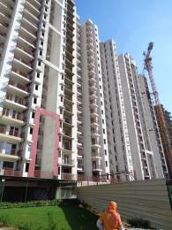 885 sqft, 2 bhk Apartment in  Spring Meadows Techzone 4, Greater Noida at Rs. 29.5000 Lacs