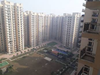 1335 sqft, 3 bhk Apartment in Nirala Estate Techzone 4, Greater Noida at Rs. 8000
