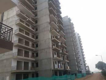 1150 sqft, 3 bhk Apartment in Builder hudda affordable home Sector71 Gurgaon, Gurgaon at Rs. 39.9900 Lacs