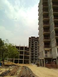 438 sqft, 1 bhk Apartment in Lotus Homz Sector 111, Gurgaon at Rs. 14.5000 Lacs