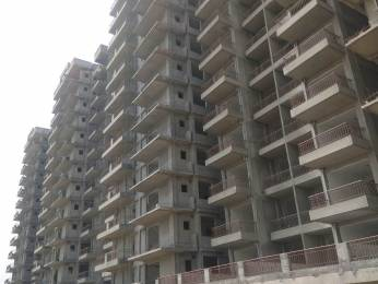 550 sqft, 1 bhk Apartment in Pivotal Devaan Sector 84, Gurgaon at Rs. 16.9900 Lacs