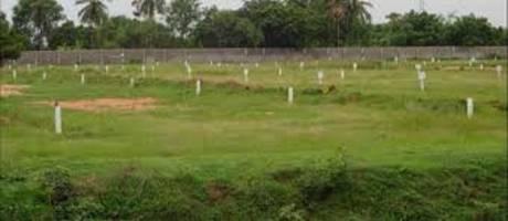 1250 sqft, Plot in Builder Project Kolathur, Chennai at Rs. 1.1000 Cr