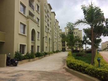 1500 sqft, 3 bhk Apartment in GM E City Town Electronic City Phase 1, Bangalore at Rs. 78.0000 Lacs