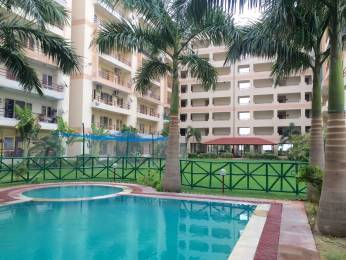 1600 sqft, 3 bhk Apartment in Builder Veera Garden Ambedkar Circle, Alwar at Rs. 26.0000 Lacs